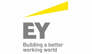 Logo Ernst & Young